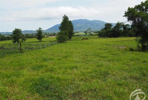 Lot 102 Old Tully Road, Feluga, Qld 4854