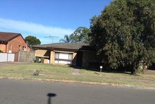 91 Sedgman Crescent, Shalvey, NSW 2770