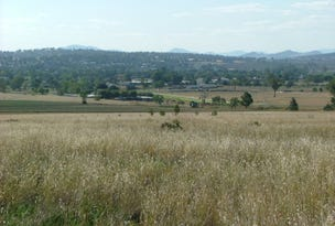 Lot 42 Callaghans Lane, Quirindi, NSW 2343