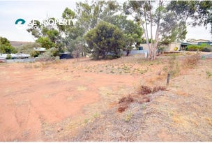 Lot 55, Perseverance Court, Younghusband, SA 5238