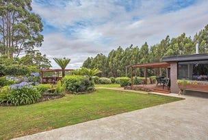 394 Preolenna Road, Flowerdale, Tas 7325