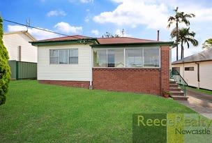 96 Cardiff Road, Elermore Vale, NSW 2287