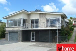 374 West Tamar Road, Riverside, Tas 7250
