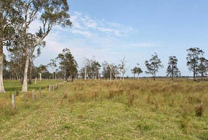 Lot 10/Lot 258 Left Bank Road, Kinchela, NSW 2440