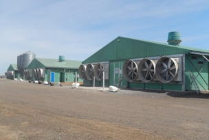 VIC Broiler Farms, 441 & 630 English Road, Lethbridge, Vic 3332