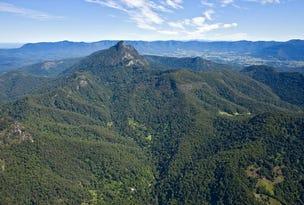 497 & 501 Mount Warning Road, Mount Warning, NSW 2484