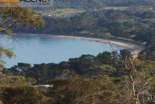 65 Roaring Beach Road, South Arm, Tas 7022
