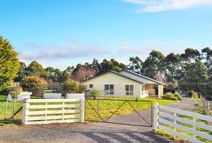 336 Back Road, Lower Wilmot, Tas 7310