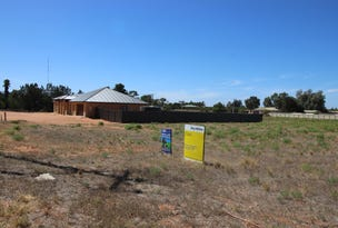 Lot 1 Vasey Road, Waikerie, SA 5330