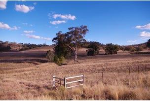 L6 Warrah Park Lane, Willow Tree, NSW 2339