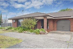 1/379 Parnall Street, Lavington, NSW 2641