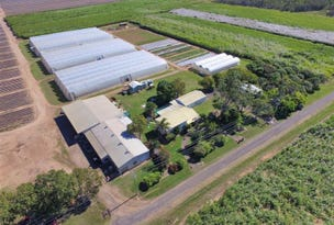 106 Sheehans Road, Calavos, Qld 4670