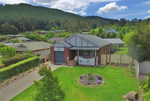 4 Norman Court, Bright, Vic 3741