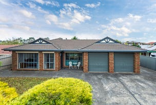 22 Michelmore Drive, Meadows, SA 5201