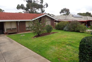 41 Ronald Road, Redwood Park, SA 5097