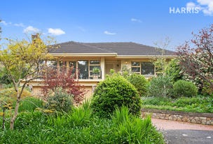 20 Ashmore Avenue, Bellevue Heights, SA 5050