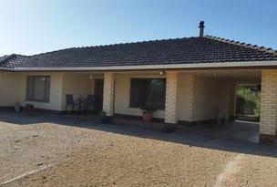 166 Shellgrit Road, Two Wells, SA 5501