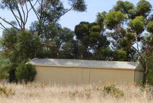 Lot 1 Pheasant Farm Road, Nuriootpa, SA 5355