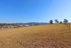 Lot 231 Elvin Circuit, Millfield, NSW 2325