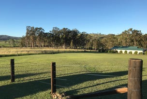 Lot 124, Park Street, East Gresford, NSW 2311