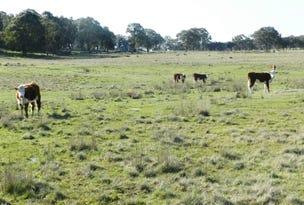 1721 Golspie Road, Golspie, NSW 2580
