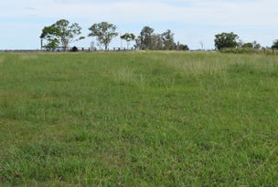 Lot 225, Lower Coldstream Road, Ulmarra, NSW 2462
