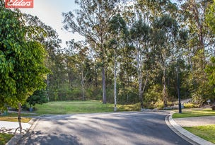 24 Naturesque Cl, Mitchelton, Qld 4053
