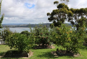 137 St Helens Point Road, Stieglitz, Tas 7216