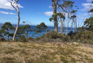 157 Adventure Bay Road, Adventure Bay, Tas 7150
