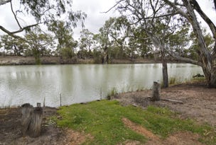 Lot 1 Darling View Road, Wentworth, NSW 2648