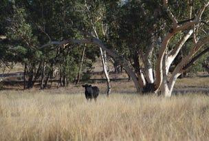 'Pinehurst' Renshaw McGirr Way, Yeoval, NSW 2868