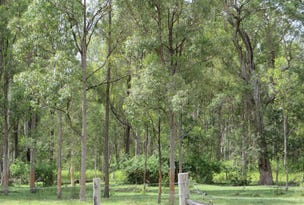 2513 (B) Old Tenterfield Road, Rappville, NSW 2469