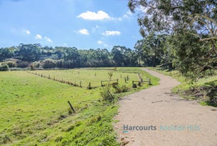 Lot 41, Scott Creek Road, Scott Creek, SA 5153
