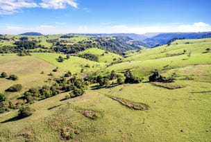 Lot 51, South West Road, Beechmont, Qld 4211