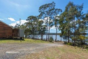 40 Wilson Drive, Tooms Lake, Tas 7209