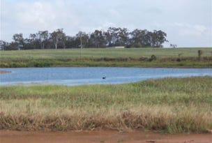 Lot 50 Mt Ossa-Seaforth Road, Seaforth, Qld 4741