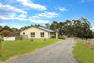 336 Back Road, Wilmot, Tas 7310