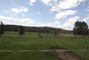 288 Tabulam Rd, Lower Bottle Creek, NSW 2469
