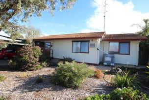 8 Don Elliott Drive, Waikerie, SA 5330