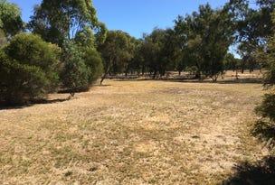 lot 163 Day Street, Henty, NSW 2658