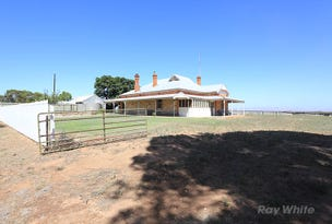 1494 Mallee Corner Road, Brinkworth, SA 5464