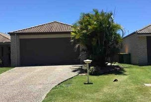 14 Waterlilly Court, Rothwell, Qld 4022