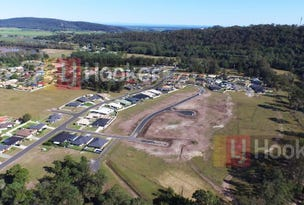 Lot 86 Aberdeen Place, Townsend, NSW 2463