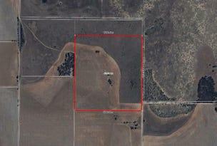 Lot 1443 Wye Farm Road, Yardarino, WA 6525