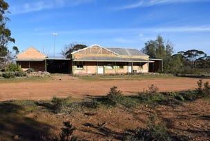 34 Railway Terrace, Veitch, SA 5311