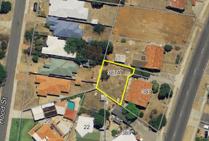 387A Carrington Street, Hamilton Hill, WA 6163