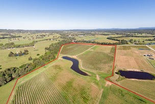 352 Wilderness Road, Lovedale, NSW 2325