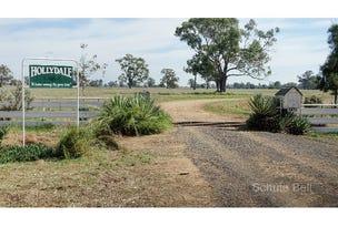 . Hollydale, Trangie, NSW 2823
