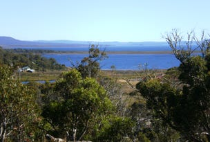Lot 588 Little Dog Court, Miena, Tas 7030