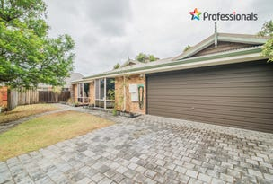3 Leaf Place, Seville Grove, WA 6112